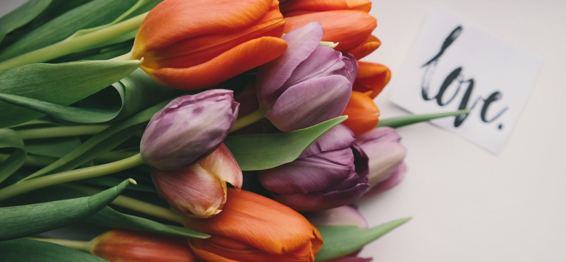 Tulips and love